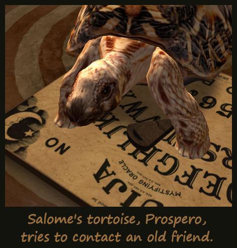 SalomeProsperoPetoftheWeekEntry