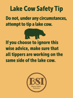 lake cow safety tips